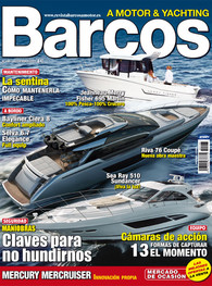 Barcos a Motor 196